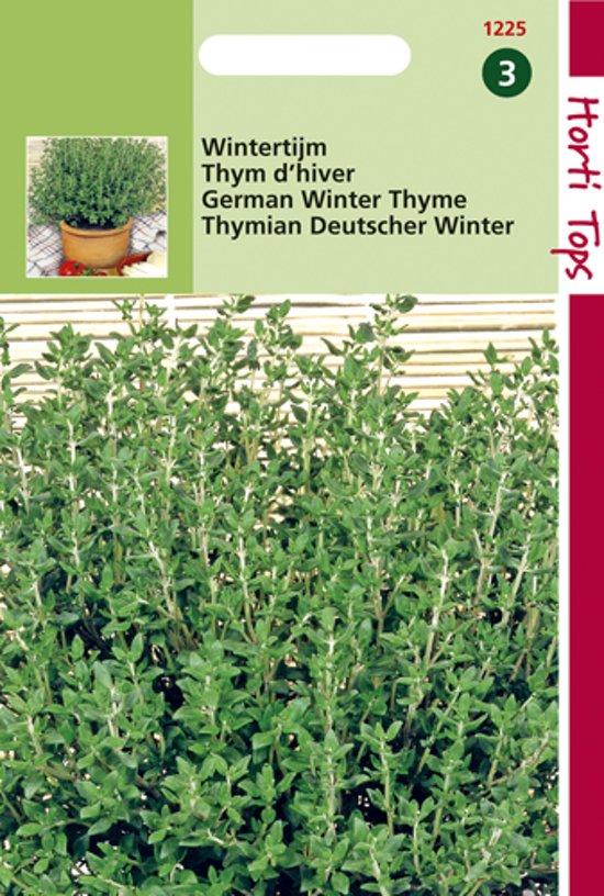 Hortitops Zaden - Tijm, Echte Winter (Thymus Vulgaris)