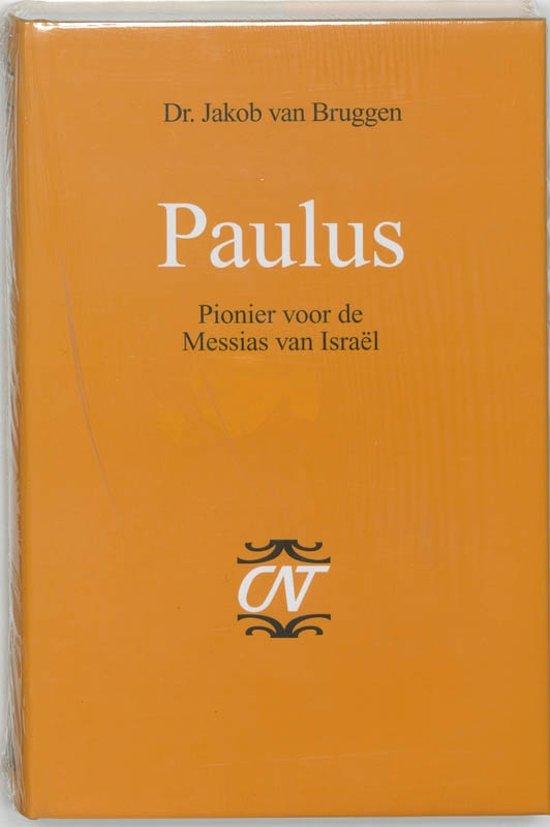 Commentaar op het Nieuwe Testament 3 - Paulus