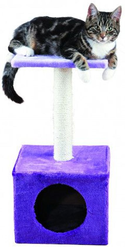 Zamora scratching post