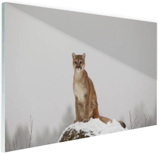 Poema op de uitkijk Glas 90x60 cm - Foto print op Glas (Plexiglas wanddecoratie)