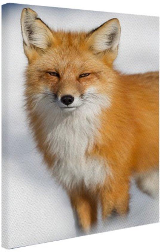 Rode vos close-up Canvas 80x120 cm - Foto print op Canvas schilderij (Wanddecoratie woonkamer / slaapkamer) / Dieren Canvas Schilderijen