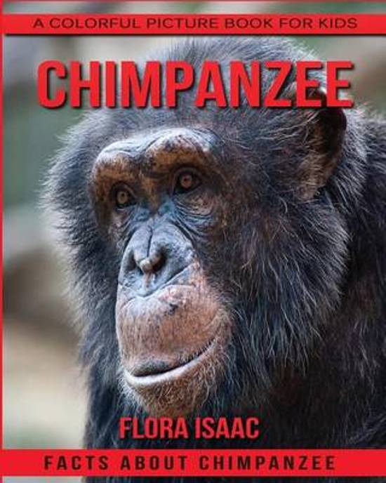 Facts about Chimpanzee a Colorful Picture Book for Kids