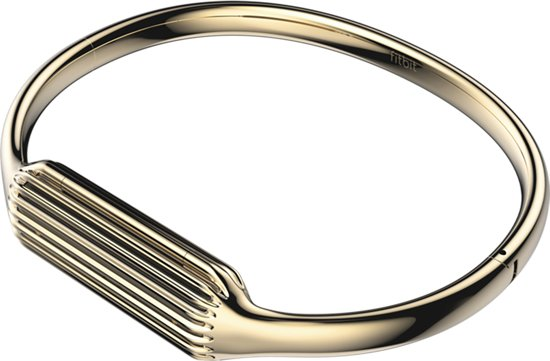 Armband voor Fitbit Flex 2 - Goud - Large