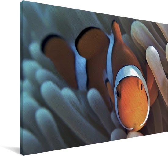 Close-up beeld van een Anemoon-vis in het koraal Canvas 90x60 cm - Foto print op Canvas schilderij (Wanddecoratie woonkamer / slaapkamer)