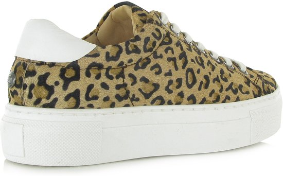 Vrouwen Luipaard Maruti 39 01 Ted Leer 1427 Sneakers 66 Maat Hairon zk9 wFxqw0
