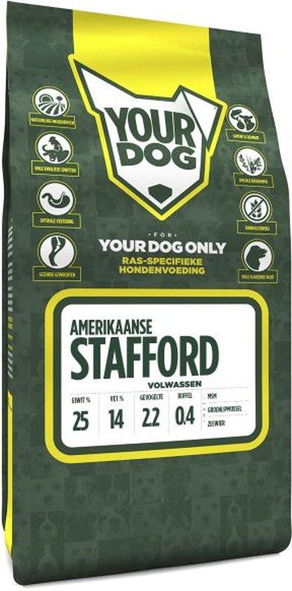 Yourdog amerikaanse stafford volwassen