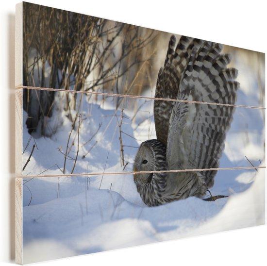 Oeraluil vliegt door de sneeuw Vurenhout met planken 120x80 cm - Foto print op Hout (Wanddecoratie)