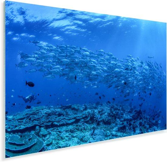 Vissenschool in de Bandazee bij het Nationaal park Wakatobi in Indonesië Plexiglas 30x20 cm - klein - Foto print op Glas (Plexiglas wanddecoratie)