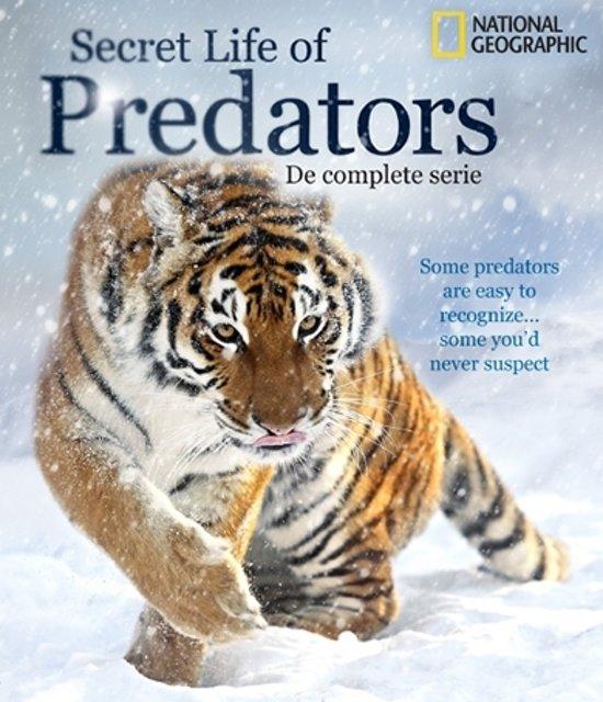 NG. Secret Life of Predators