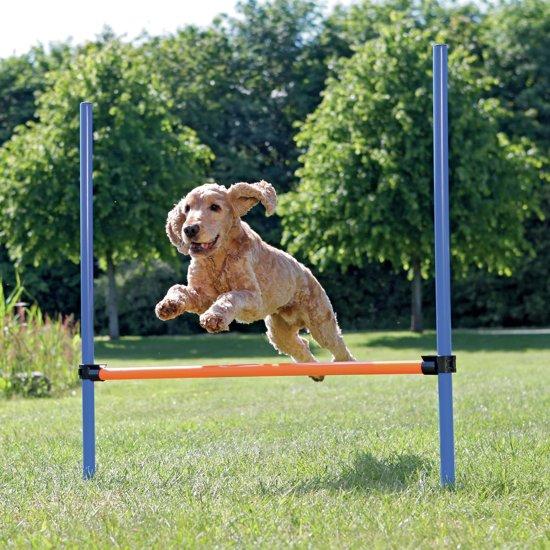 Trixie Dog Activity Agility Horde - Blauw/Oranje - 123 x 115 x 3 cm