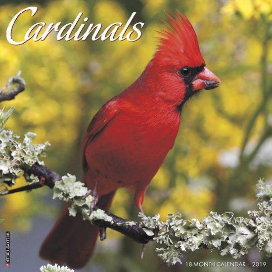 Cardinals 2019 Wall Kalender