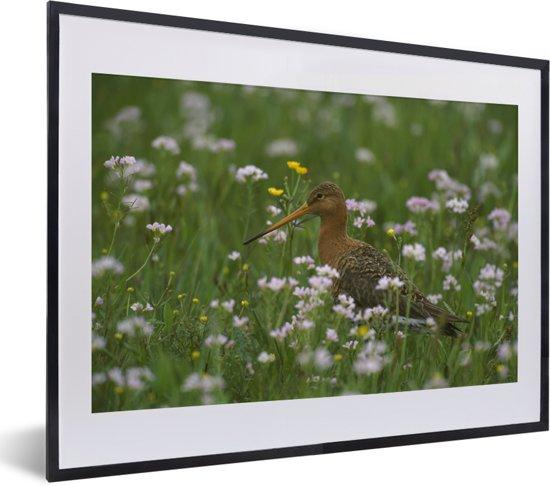 Foto in lijst - Een grutto tussen de bloemen fotolijst zwart met witte passe-partout klein 40x30 cm - Poster in lijst (Wanddecoratie woonkamer / slaapkamer)