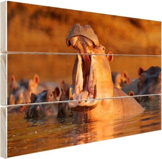 Nijlpaard met open bek Hout 160x120 cm - Foto print op Hout (Wanddecoratie) XXL / Groot formaat!