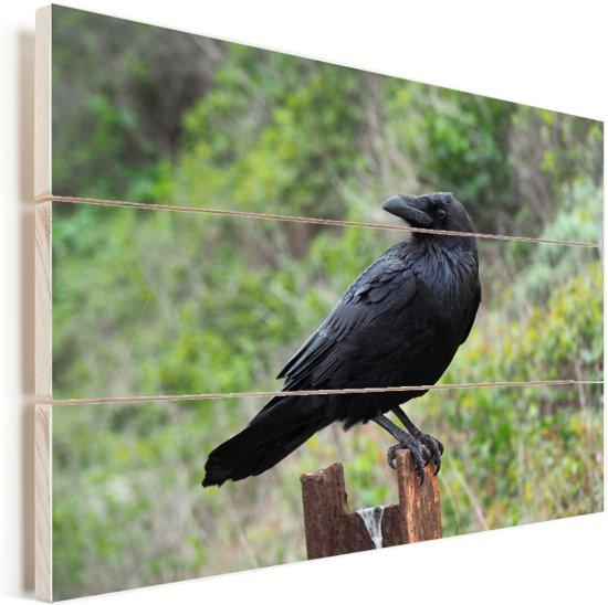 Roek rust uit op een hek Vurenhout met planken 160x120 cm - Foto print op Hout (Wanddecoratie) XXL / Groot formaat!