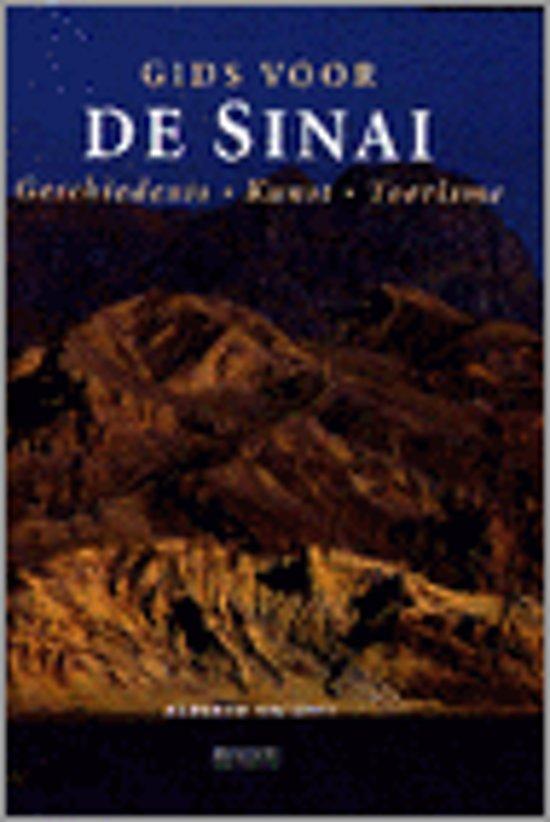 GIDS VOOR DE SINAI - Alberto Siliotti pdf epub
