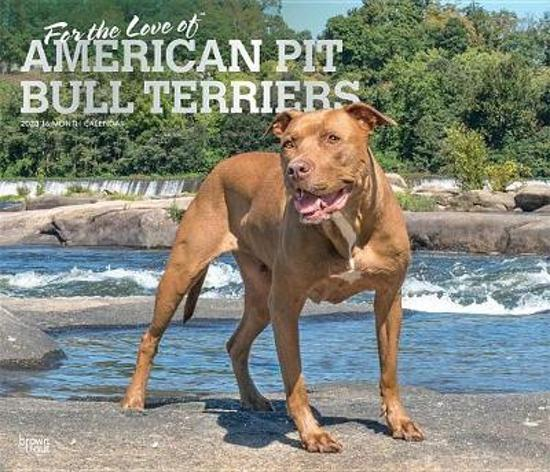 American Pit Bull Terriers, for the Love of 2020 Deluxe Foil