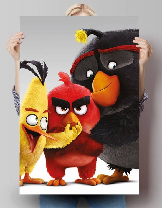 bolcom reinders angry birds characters poster