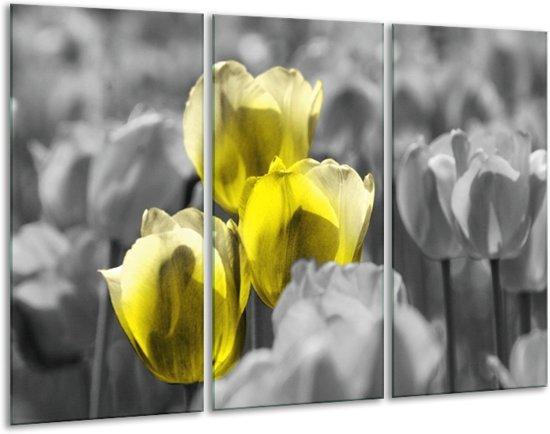 Glasschilderij Tulpen | Geel, Grijs | 120x80cm 3Luik | Foto print op Glas |  F002769