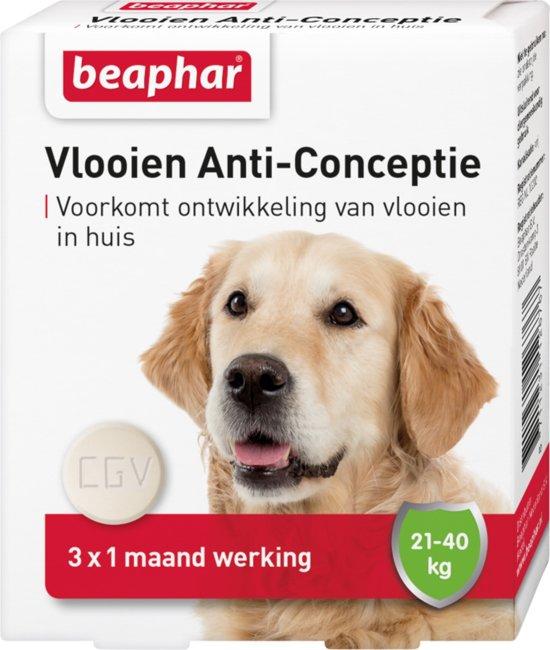 Beaphar Vlooien Anticonceptie - Grote Hond 21-40 kg