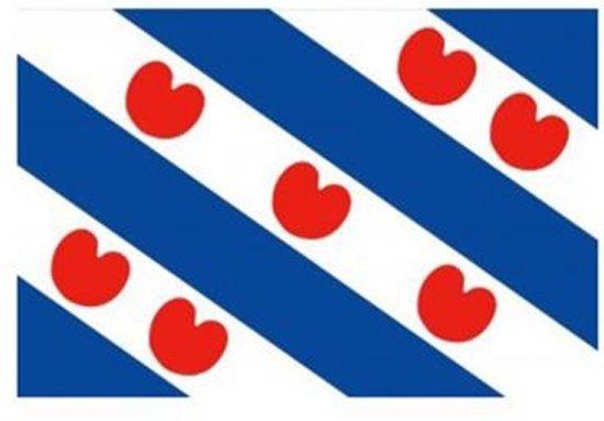 vlag Friesland Friese bootvlag 40 x 60cm