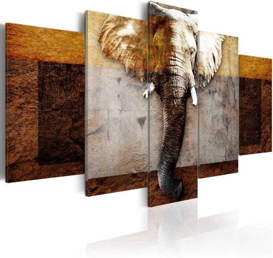 Schilderij - De kracht van Afrika (Olifant), 5luik, bruin/beige