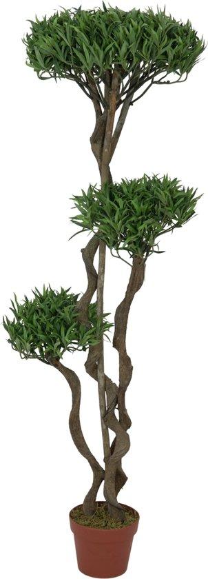 Boom In Pot.Europalms Bonsai Kunstplant Boom In Pot 130 Cm