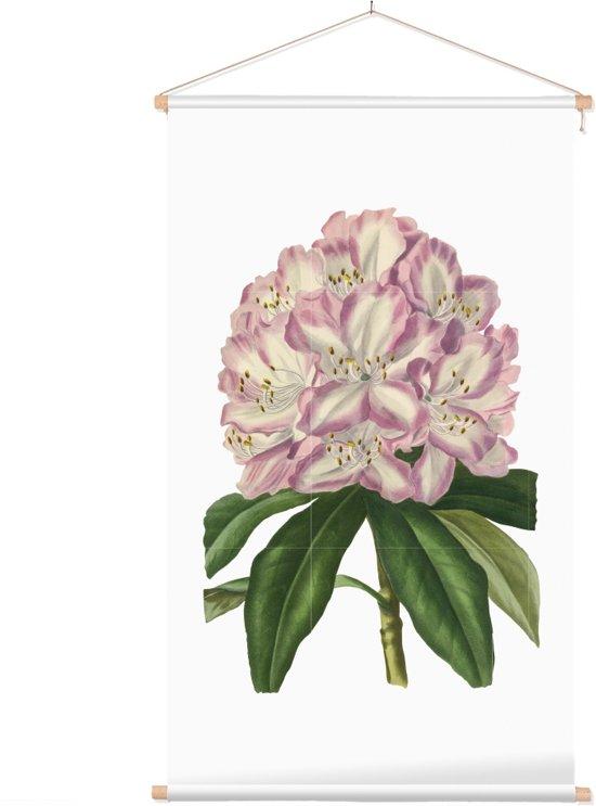 Textielposter Botanisch Rododendron Aquarel (Rhododendron) - 40 x 70 cm