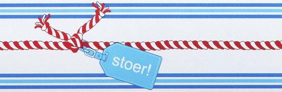Stoer Behang Lief.Bol Com Lief Behangrand 500x15 Cm