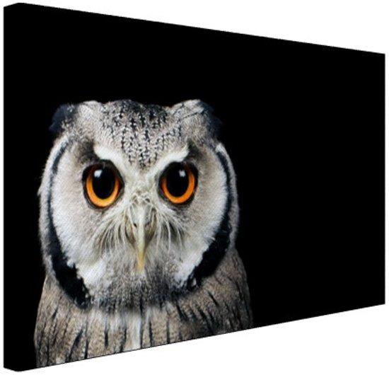 Close-up uil Canvas 80x60 cm - Foto print op Canvas schilderij (Wanddecoratie)