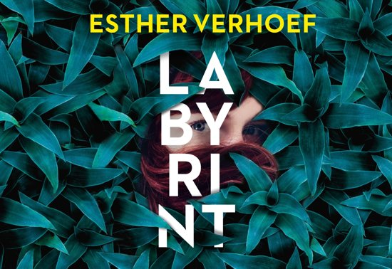 Boek cover Labyrint - De verhalen van Esther Verhoef (Paperback)