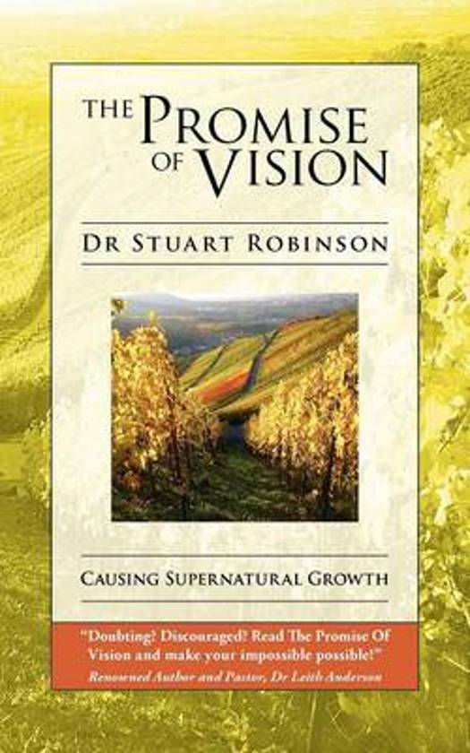 The Promise Of Vision