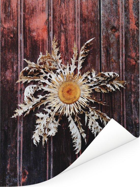 Zilverdistel geschilderd op een houten deur Poster 120x160 cm - Foto print op Poster (wanddecoratie woonkamer / slaapkamer) XXL / Groot formaat!