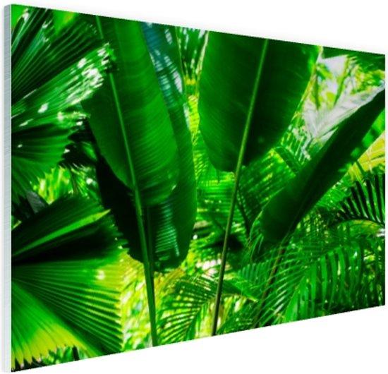 Tropische bladeren in jungle  Glas 90x60 cm - Foto print op Glas (Plexiglas wanddecoratie)