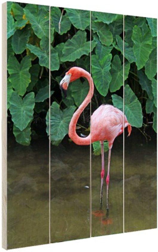 Een flamingo met planten achtergrond Hout 80x120 cm - Foto print op Hout (Wanddecoratie)
