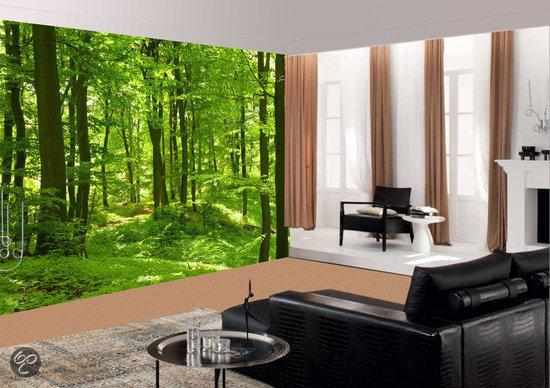 Homedecoration Fotobehang - Muurposter - zelfklevend - Bos in de lente ...
