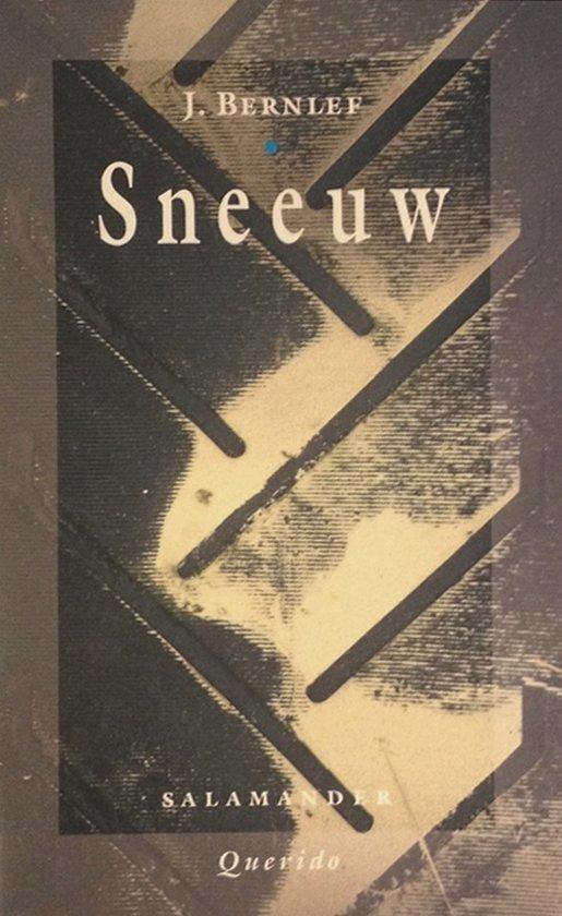Bolcom Sneeuw J Bernlef 9789021494067 Boeken