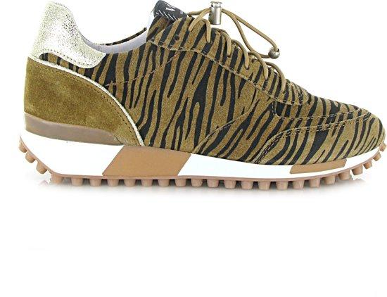 Zebra Vai 5107076 Alce Via Giulia Bruin41 9WHeED2IY