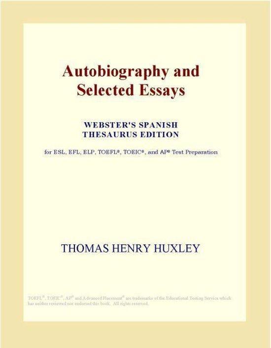 English essay thesaurus
