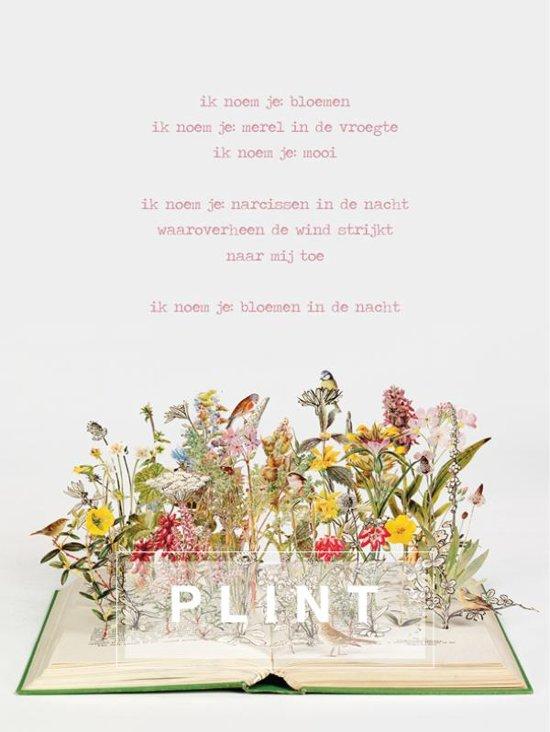 A4 poezieposter Ik noem je bloemen