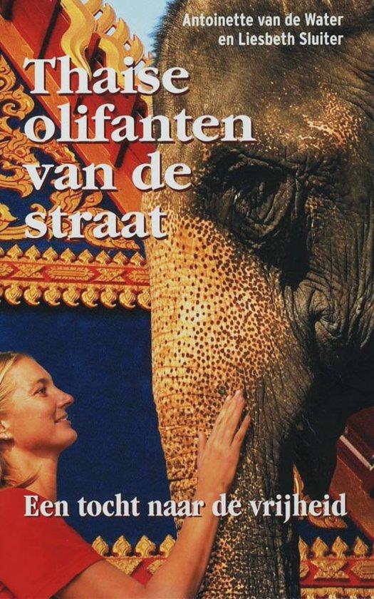 Thaise Olifanten Van De Straat