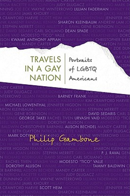 TRAVELS IN A GAY NATION