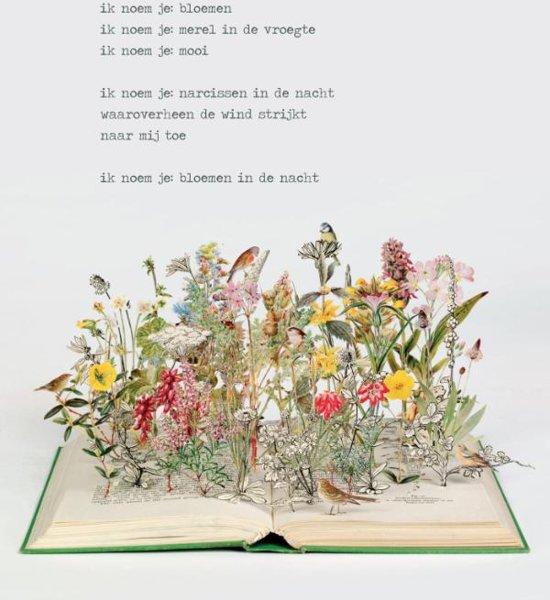 Poezieposter Plint Jan Hanlo ik noem je bloemen Su Blackwell