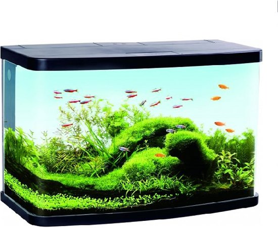 panoramisch aquarium met led 60 liter. Black Bedroom Furniture Sets. Home Design Ideas