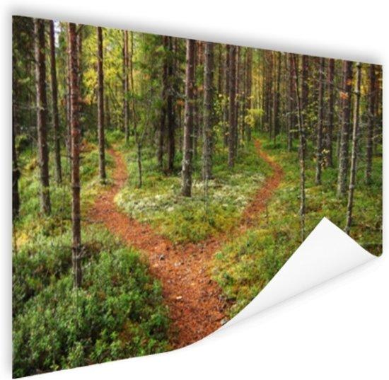 Een kruispunt in het bos Poster 60x40 cm - Foto print op Poster (wanddecoratie woonkamer / slaapkamer)