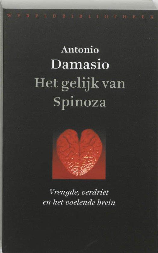 Het gelijk van Spinoza - vreugde, verdriet en het voelende brein