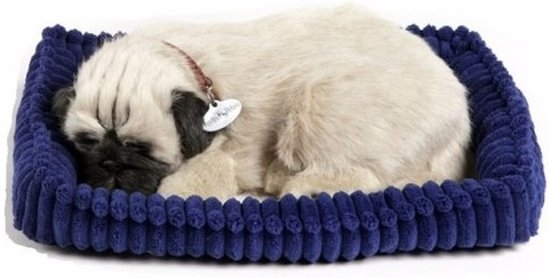 Perfect petzzz Soft pug