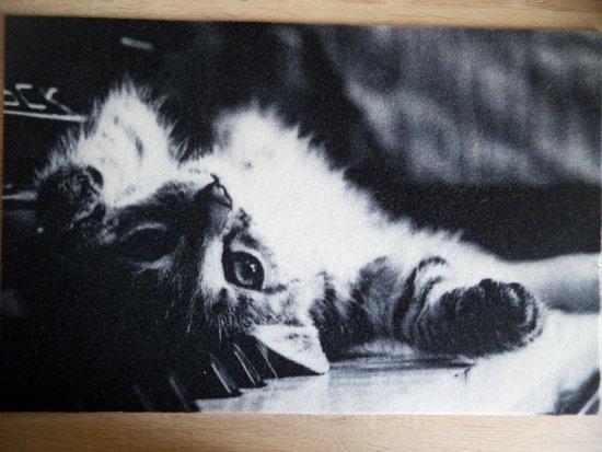 Deurmat 40x60 Kat Rug Black&White