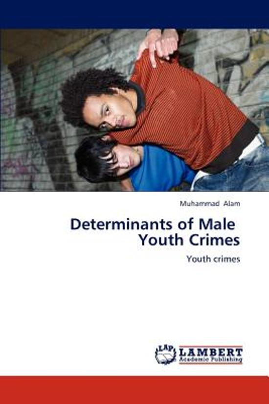 Determinants of Male Youth Crimes