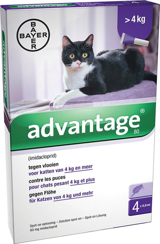 advantage 80 kat vanaf 4kg 4 pipet. Black Bedroom Furniture Sets. Home Design Ideas