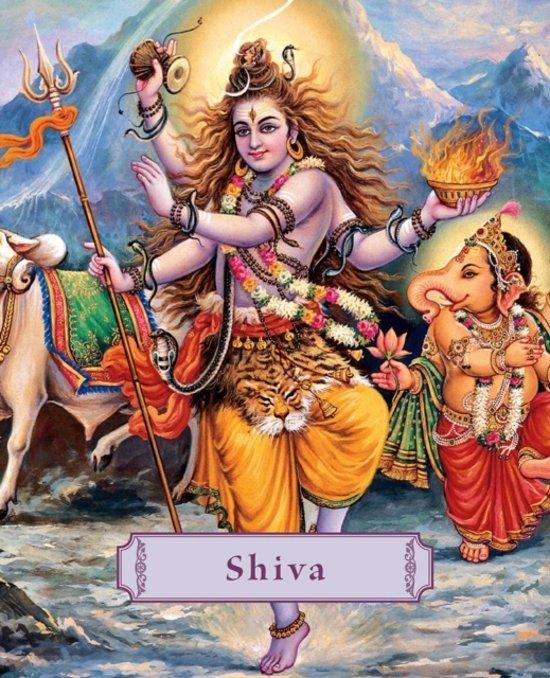 Boek cover Shiva van James H. Bae (Hardcover)